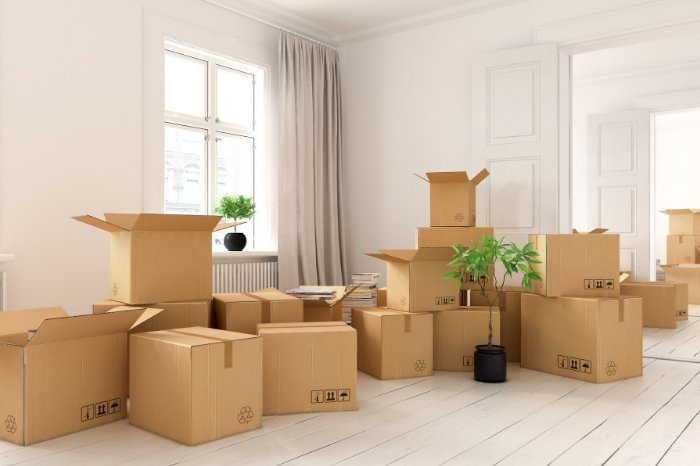 3 - Moving and Move Management